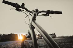 Sunrise Kunderberg (Adrianusz) Tags: adrianus adrianusz arjan adrianuz arjanvandenoudenrijn oudenrijn bike mountainbike mountain sunrise zonsopkomst black white blackandwhite blackwhite kunderberg voerendaal