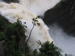 World Famous Jog Falls Photography By CHINMAYA M.RAO Set-1 (110)