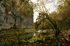 Chee Dale monster (PentlandPirate of the North) Tags: cheedale river wye gorge peakdistrict monsaltrail creepers