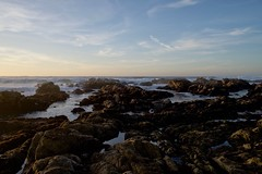 27 (nosha) Tags: beauty pacific pacificgrove asilomar beach coast water seascape