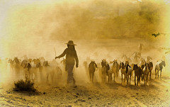 End of a long day (Artypixall) Tags: texture burma goats getty myanmar dust herd bagan faa herder