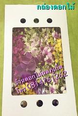 ช่อดอกไม้ ภูเก็ต,ร้านดอกไม้ ภูเก็ต,ส่งดอกไม้ ภูเก็ต,ช่อดอกไม้,พวงหรีด ภูเก็ต 4