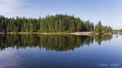 Lake near Seinäjoki (ArnauOrengoG) Tags: lake tree water forest suomi finland relax lago agua peace paz calm symmetry bosque calma seinäjoki tranquilidad simetría