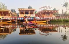 Dal Lake, Kashmir, India (anilegna) Tags: india houseboat kashmir srinagar iphone dallake sukoon