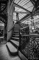 The famous start (Tony Lau Photographic Art) Tags: building stair tony rookery cases lau chicagoil chicagoist canon1022mm canoneos7d