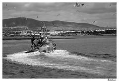 Florada Beira - Olhão (AurelioZen) Tags: portugal europe algarve fishingboat riaformosa olhão sotavento canonefs1785isusm coastalfishery