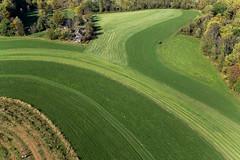 Pumpkinville - Milky Way Farm, Chester County Pennsylvania (Wind Watcher) Tags: county kite green way dynamic pennsylvania farm pumpkins levitation delta chester kap milky spreader windwatcher