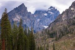 Teton Mountains (Bridgetony) Tags: usa northamerica wyoming grandteton