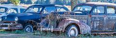 Trio (augphoto) Tags: auto old abandoned car us rust automobile unitedstates southcarolina rusty donalds augphotoimagery