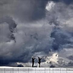 Seagull and .. parrot  ^_^ (Nespyxel) Tags: sky oslo norway clouds nuvole seagull photographers cielo operahouse copy shooters gabbiano norvegia fotografi imitate imitare nespyxel stefanoscarselli tufototureto