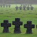 German military cemetery WWII in Normandy