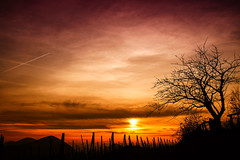 Tramonto sui Colli Euganei (tampurio) Tags: sunset sky italy sun sunlight tree clouds sunrise landscape italia tramonto sony hills cielo tramonti sole inverno colori paesaggi paesaggio colline veneto collieuganei cintoeuganeo slta58