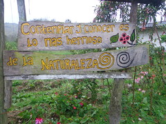 """agroecologia • <a style=""""font-size:0.8em;"""" href=""""https://www.flickr.com/photos/61739812@N08/12232801743/"""" target=""""_blank"""">View on Flickr</a>"""