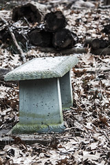 Greek Bench (Willem_Butler) Tags: winter portrait snow green fall leaves contrast greek interesting snowing harsh