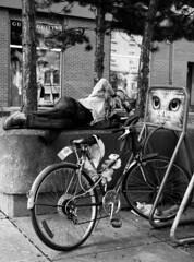Waking Up in Nature by Man-Wei - George Street, Ottawa, Canada (2013)  Rolleiflex Automat MX Zeiss Tessar f/3,5 Kodak TMAX 400 (EI 800), TMAX Developer (1:9), CanoScan 9000F
