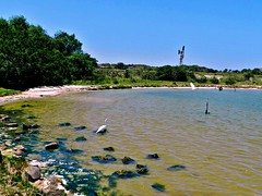 A natureza,nas antigas salinas... (Edésyo Moreira, #UmPaisagista) Tags: riodejaneiro salinas canoeironativo