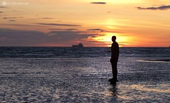 IMG_6883 (chris fearnehough) Tags: sunset liverpool sunrise crosby antonygormley anotherplace gormleystatues gormleystaues ironmanstatues