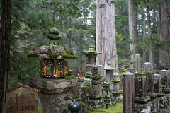 (Rai Robledo) Tags: japan digital canon eos reflex abril april fotógrafo 2014 japón raiworld fotoraiworld rairobledo rairobledophotography rairobledofotografía wwwrairobledocom rairobledocom copyrightrairobledo fotógrafomadrid canoneos5dmarkiii 5dmkiii ©rairobledo rairobledofotógrafo abril2014
