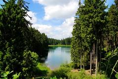 Harz Landscape 2