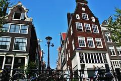 IMG_3513 (chrishoffman1969) Tags: travel flowers amsterdam sign tulips district windmills canals redlight prostitutes vangogh annefrank amstel heinenken kuekenhoff