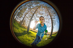 In a Bubble (Victoria Hederer Bell) Tags: sun silly lensbaby fun outside happy kid fisheye bubble pro circular composer 2013 victoriahedererbell