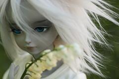 Tadaharu (ExistingDay) Tags: blue male ball grey doll bjd soom msd jointed tadaharu