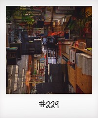 "#DailyPolaroid of 15-5-14 #229 • <a style=""font-size:0.8em;"" href=""http://www.flickr.com/photos/47939785@N05/14546018211/"" target=""_blank"">View on Flickr</a>"