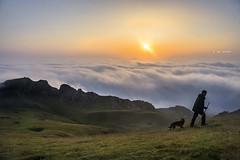 En busca del rebaño (Jabi Artaraz) Tags: etxebarria pastor perro niebla bruma lainoa egunsentia amanecer aldamin jabiartaraz ipiñaburu jabi gorbea sunset sunrise