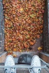 Autumnfall (Jani M) Tags: autumn fall shoes feet cnverse leaves leaf