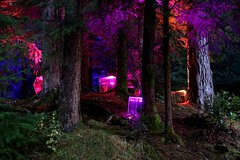 2016 - 14.10.16 Enchanted Forest - Pitlochry (22) (marie137) Tags: enchanted forest pitlochry mobrie137 scotland lights music people water reflection trees shows food fire drink pit patter shapes art abstract night sky tour family walk path bells smoke disco balls unusual whisperer bridge wood colour fun sculpture day amazing spectacular must see landscape faskally shimmer town
