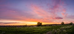 2016-10-01_01-32-19 (AnthonyCNeill) Tags: sunset panorama landscape summer panoramica panoramamaker countryside nikon d7000 cloudsstormssunsetssunrises