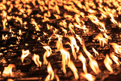 IMG_0532 Banjong-Seal324 (Banjong Raksaphakdee) Tags: background bible black bright burning candle candlelight celebration christian christianity christmas church dark death easter equipment faith fire flame glowing heat holiday holy hope life light love many memorial memory night orange peace pray prayer red religion religious romance romantic scene sign spiritual spirituality symbol tea tranquil wax yellow