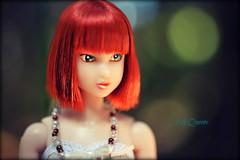 Queenie ( Lily Queens ) Tags: queenie red momoko kid blue strawberry sekiguchi doll