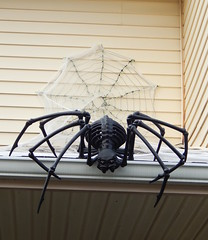 Spider Webbed (Morganthorn) Tags: halloween haunted house spooky creepy skeleton spider ghost ghoul zombie horror