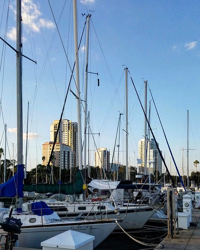 Looking north...  #stpetemunicipalmarina #boatdock #boatlife #ilovetheburg