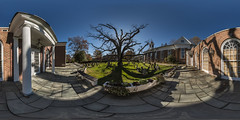 600 Year Old Oak Tree Panorama (Nathan Tweti) Tags: church tree panorama 360x180 ptgui nj oak