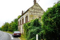 N7 Hotel Poisson Dore in Bagneaux-sur-Liong 15.9.2016 3903 (orangevolvobusdriver4u) Tags: rn7 route national 7 routenational7 routebleue 2016 archiv2016 france frankreich hotel restaurant abandoned verlassen poisson dore hotelpoissondore bagneauxsurliong road volvo740 oldsign deadsign old ads oldads ghostsign ghostads