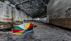 Fuera de lugar (Perurena) Tags: nave fabrica factory abandono ruina decay escombros sombrilla colores estructura urbex urbanexplore