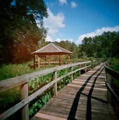 Pinhole walkway and shelter (Neal3K) Tags: f170newman wetlands centerkodak ektar 100clayton county water authorityvermeer pinhole camra georgia