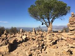 Wisdom tree (melissaholinsworth3) Tags: wisdom poetry art rockformations rocks rock skyline landscape city almondmelk hiking losangeles la hollywood wisdomtree trail hike warrior yoga