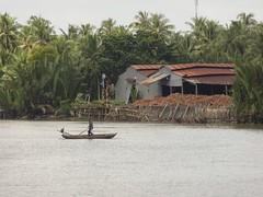 IMG_3342 (program monkey) Tags: vietnam mekong river delta cargo boat ben tre tra vinh palm tree coconut processing paddle row oar