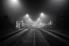 incoming tram @ Heuried . Zurich (Toni_V) Tags: m2401805 rangefinder digitalrangefinder messsucher leica leicam mp typ240 28mm elmaritm elmaritm12828asph street night nacht heuried tram vbz city urban perspective fog mist nebel birmensdorferstrasse blackwhite monochrome schwarzweiss bw switzerland schweiz suisse svizzera svizra toniv 2016 161022 iso1250
