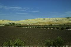 Field is ready for planting (T   J ) Tags: morocco chefchaouen sefasawan fez teeje fujifilm xt1 fujinon1024mmf4