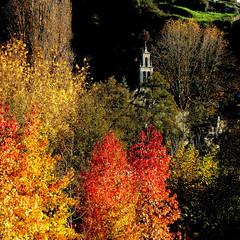 Otoo en Allariz (nuska2008) Tags: nuska2008 allariz orense galicia nanebotas espaa otoo colorido iglesia rboles naturaleza olympussz30mr flickr coloridootoal imagennocturna