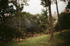 #NYC25 (Sonia Burghardt) Tags: visualnothings analog analogphotography analogcamera analogue newyork newyorkcity centralpark nyc usa 2016 tripdiary olympus olympusamateur kodak kodakgold filmphotography filmclub 35mm 35mmfilm onlyanalog nofilter tumblr