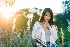 DSC_1833 (Robin Huang 35) Tags: 孫卉彤 candy 陽明山 芒草 秋芒 大屯山 大屯自然公園 lady girl d810 nikon