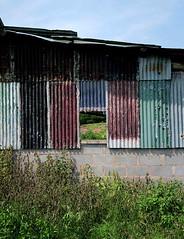 Woolla (leavesandpuddles) Tags: woolla herefordshire weathered corrugated corrugatediron bredwardine wyevalley kilvertcountry blancetnoir barn fieldbarn derelictbarn farm farming