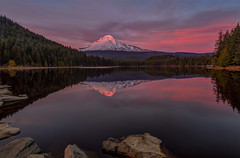 Trillium Lake Alpine Glow (Cole Chase Photography) Tags: sunset oregon trilliumlake reflection mthood mounthood governmentcamp pacificnorthwest mountainpeak
