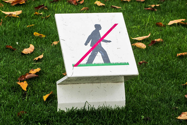 Do Not Walk on This Grass!