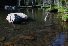 Clear Water (Let Ideas Compete) Tags: park summer mountain lake high pond colorado scenic rocky national rmnp loch wilderness theloch
